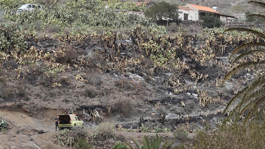 Incendio en Tasarte.  EFE/Elvira Urquijo A.