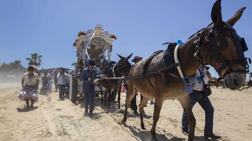 35 hermandades y la Matriz de Almonte inician hoy su peregrinación al Rocío