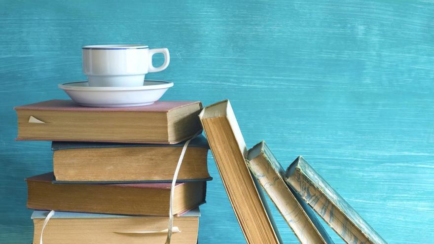 Pila de libros. (DP).