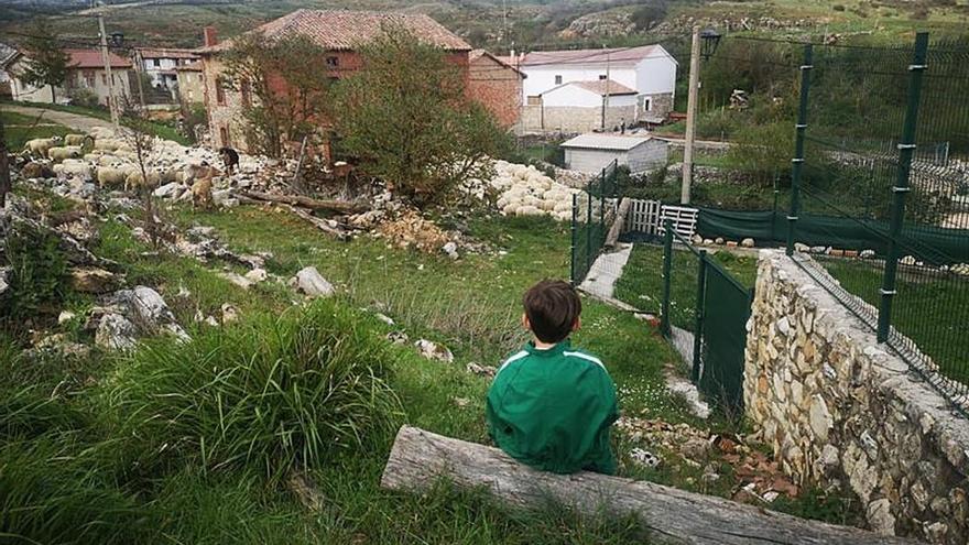 Lanzan una iniciativa medioambiental para recuperar la España vaciada