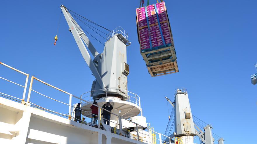 Un cargamento de mandarinas entra a un buque con destino a EEUU.