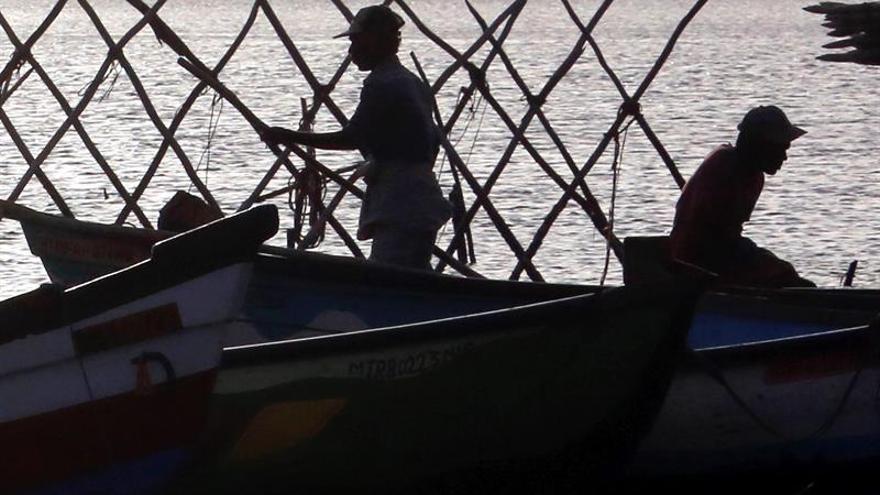 """Transbordos en alta mar: La trampa del pescado """"invisible"""""""