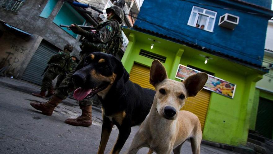 Ocupación por las fuerzas armadas del Complejo favelado da Maré en el año 2014, zona norte de Rio de Janeiro.   FOTO: Naldinho Lourenço