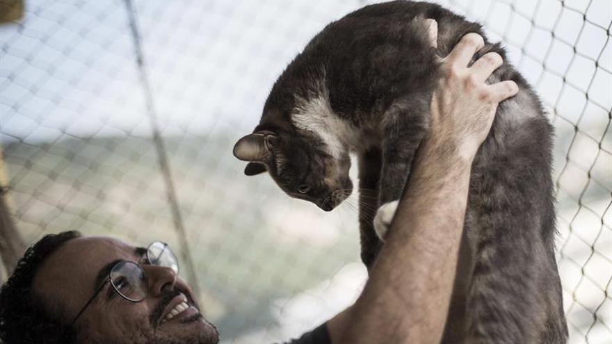 Barakaldo pide que no se abandonen animales en verano