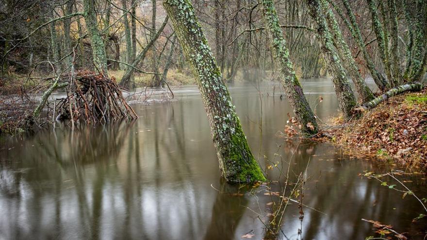 Estos son los premios de fotografía y mini documental con dron para visibilizar la riqueza natural del río Sorbe