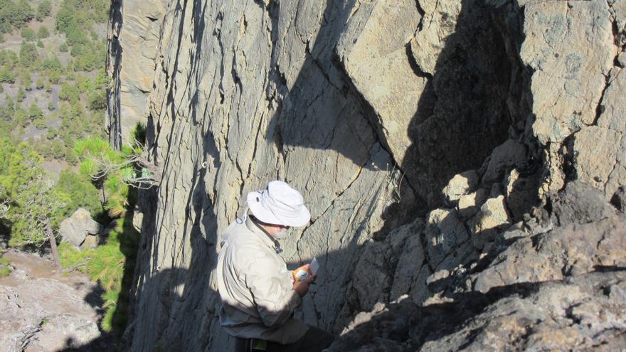 En la imagen, medición de las estrías de falla en los Roques de Jedey. Foto: IMGE