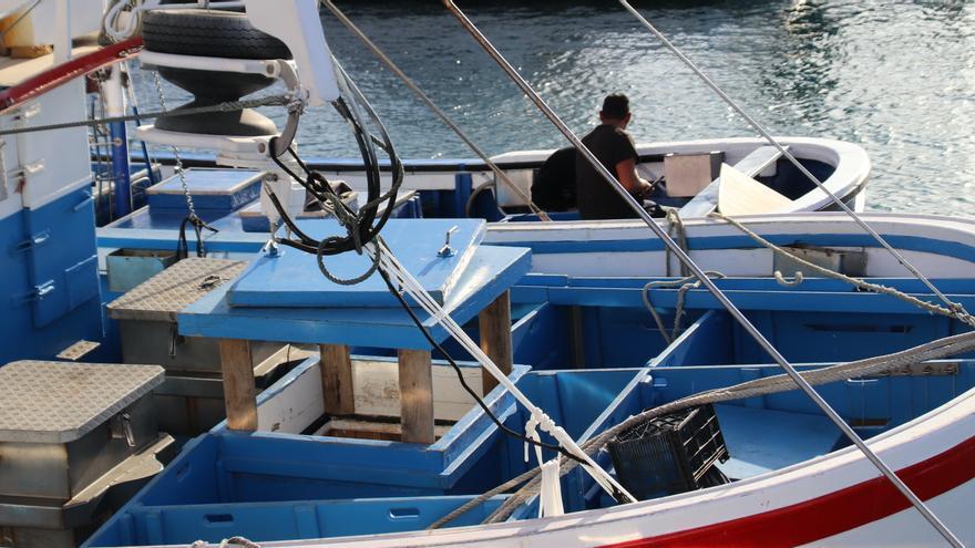 Canarias solicita un tratamiento diferenciado en el reglamento del Fondo Europeo Marítimo y de Pesca