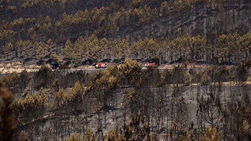 La Xunta da por controlado el incendio de Verín, que afectó a 1.361 hectáreas