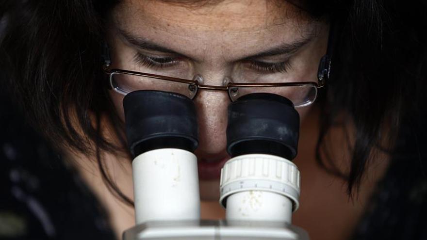 Ministros del G7 apoyan la incorporación de más mujeres al sector científico
