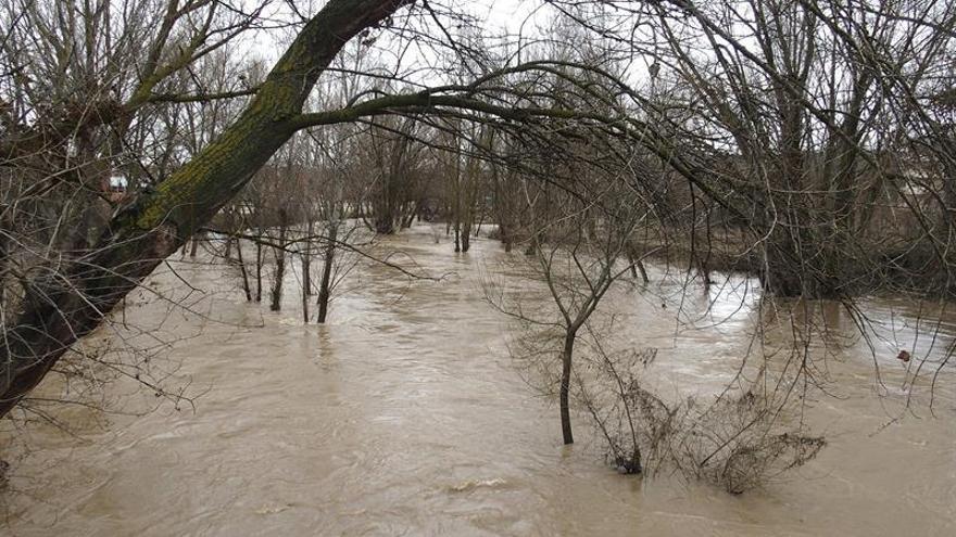 Gobierno prorrogará hoy medidas por sequía en cuencas del Júcar y Segura