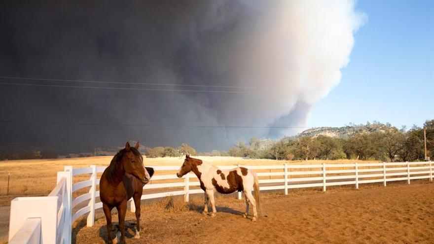 Aumentan a 30.000 los evacuados por devastador incendio en el norte de California
