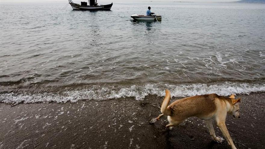 La Costa del Sol fija su objetivo en Fitur en la recuperación del turismo nacional