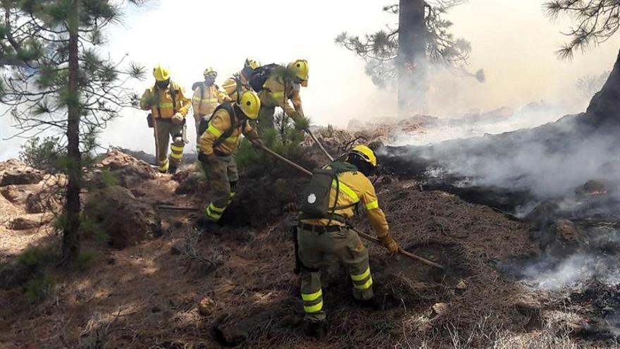 Efectivos de la brigada del Operativo de Prevención y Extinción de Incendios en Tenerife.