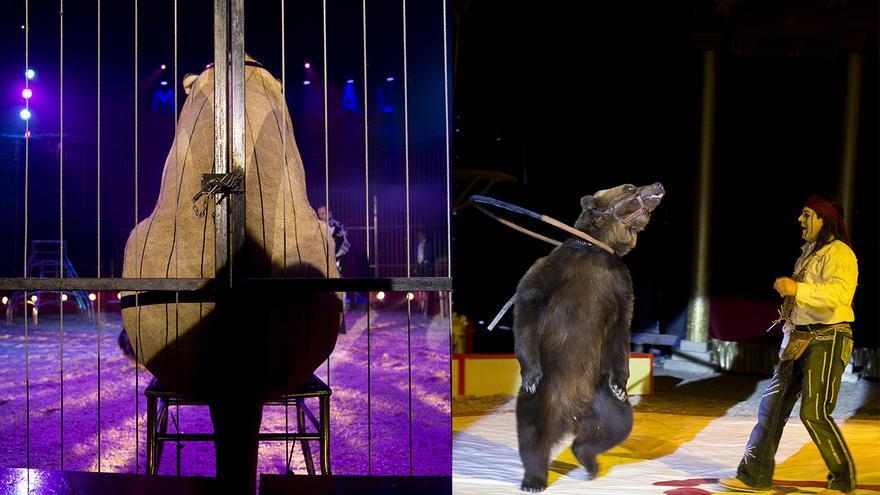 Izquierda: Circo Mundial. Derecha: Circo Quirós  Fotos: Tras los Muros