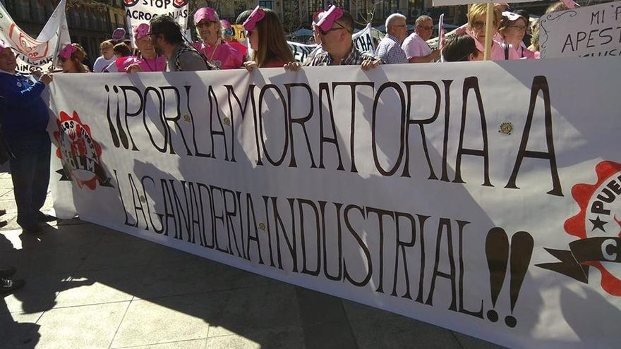 Manifestación en Toledo contra las macrogranjas