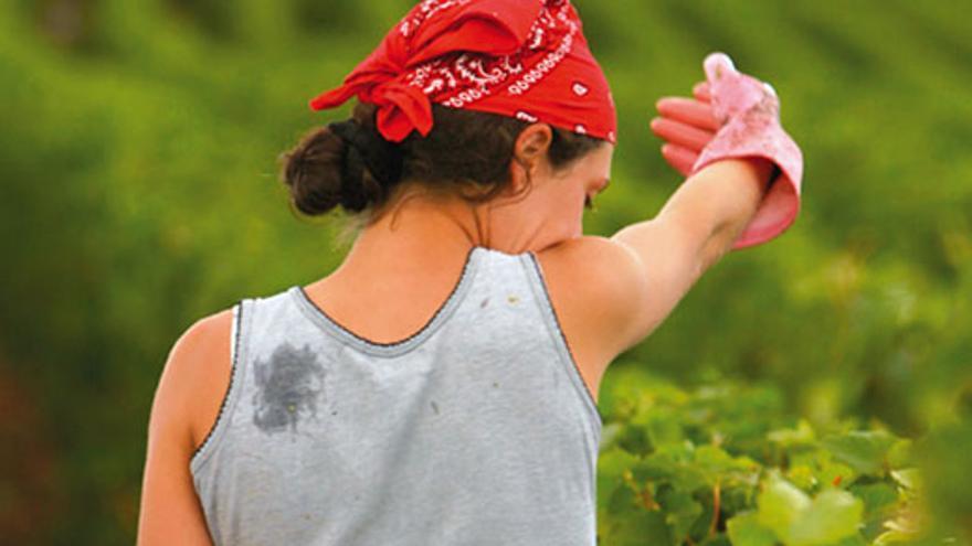Imagen perteneciente al estudio sobre las mujeres en el medio rural elaborado por el Cabildo de Tenerife.