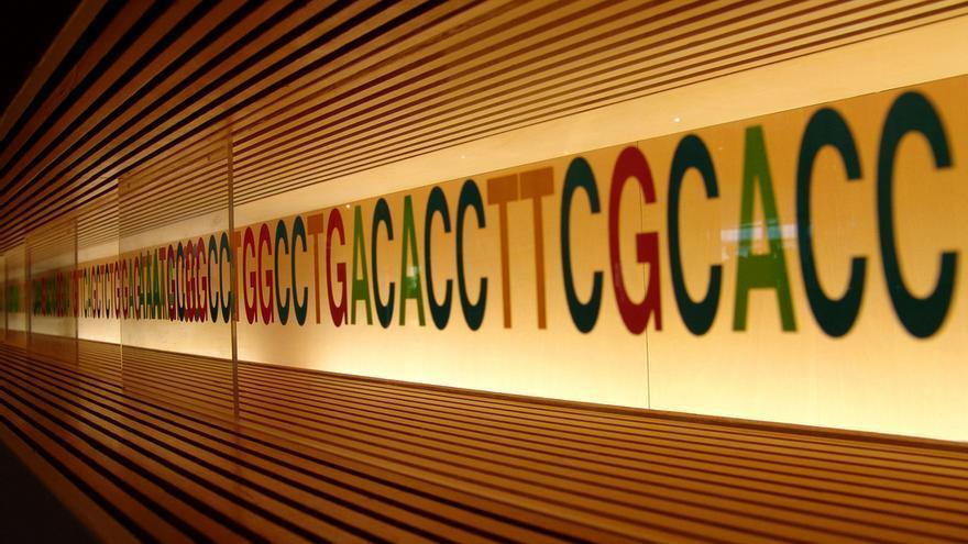 Los test genéticos se han democratizado en los últimos años: ahora su coste es inferior a los 100 euros