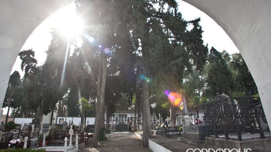Cementerio de la Salud | MADERO CUBERO