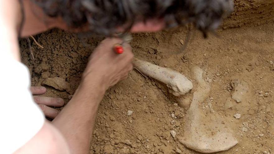 Hallan seis cadáveres de las víctimas de una masacre paramilitar en Colombia