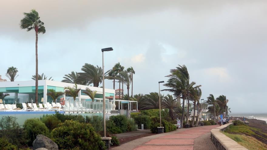 (Imagen de archivo) Viento en el sur de Gran Canaria (ALEJANDRO RAMOS)