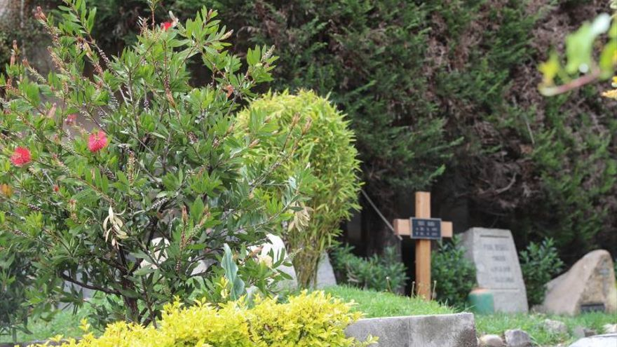 """El aporte alemán al desarrollo de La Paz perdura en un """"cementerio bosque"""""""