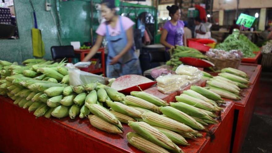 El maíz es el principal producto de autocosumo para agricultores mexicanos