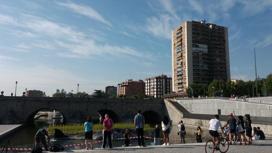Vecinos asistiendo a la acción con la ballena varada en Madrid
