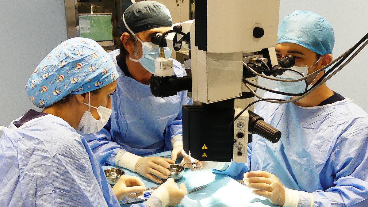 Profesionales del hospital en una intervención