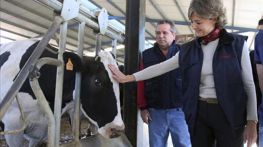 Los productores de leche, ante las horas más decisivas para su futuro