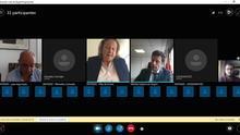 Captura de pantalla de la sesión del primer juicio telemático de España.