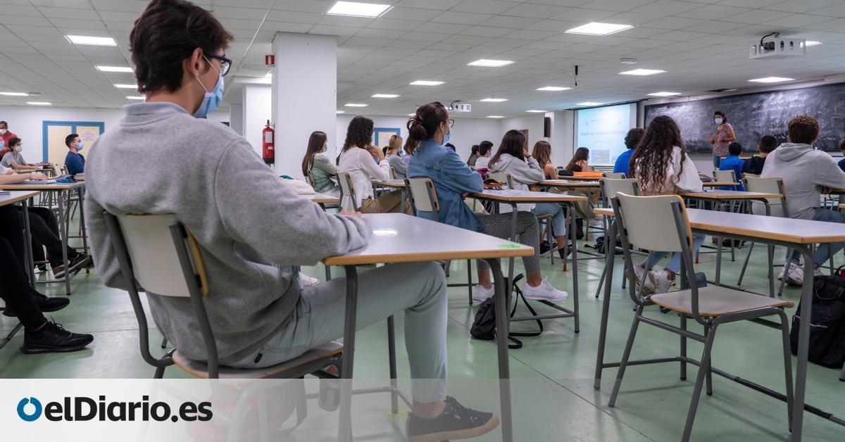 Un plan plurianual para bajar las ratios o incorporar la enfermería escolar: los retos educativos que plantea ANPE en Canarias