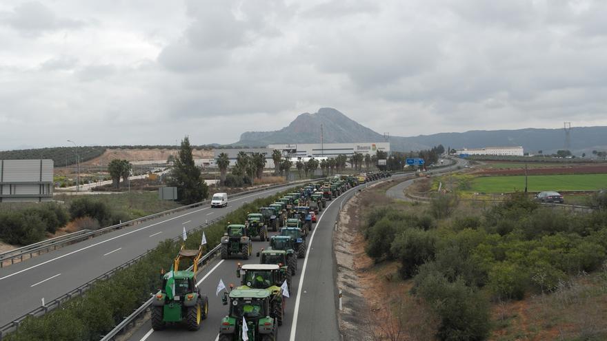 """Velasco cree que el Gobierno debe apoyar """"al máximo"""" medidas para que agricultores andaluces recuperen la rentabilidad"""