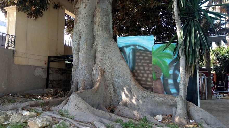 Caseta instalada junto al ficus del Paseo del Malecón