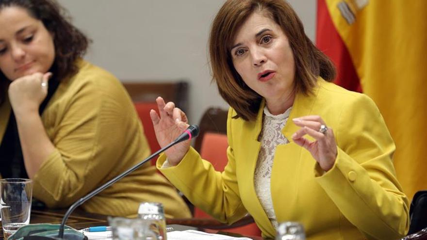 La consejera de Sanidad del Gobierno de Canarias, Teresa Cruz, durante su comparecencia este lunes en comisión parlamentaria.