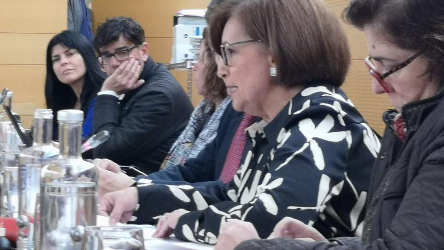 Juana María Reyes (CC), responsable del IASS, en el pleno del Cabildo de Tenerife