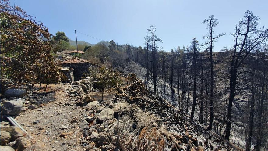 El Gobierno da por finalizada este 1 de octubre la situación de emergencia en Tijarafe por el incendio del 8 de septiembre