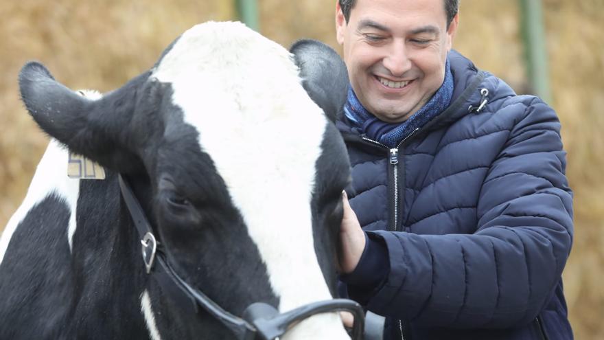 El candidato del PP, Juanma Moreno, en un acto de campaña.