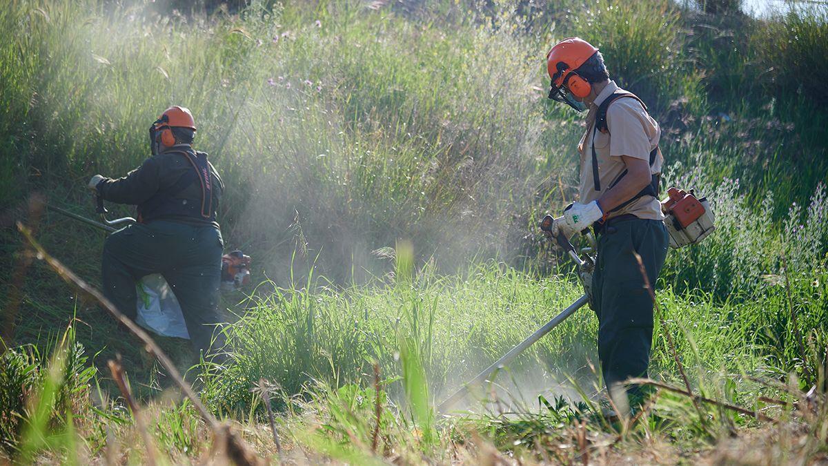 Operarios de Sadeco desbrozan y limpian un solar.