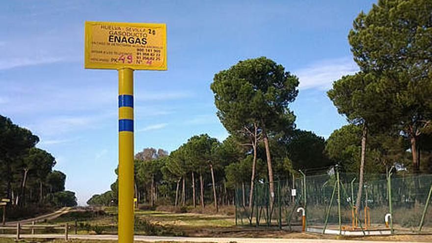 Doñana está afectada, más o menos directamente, por cuatro proyectos similares.