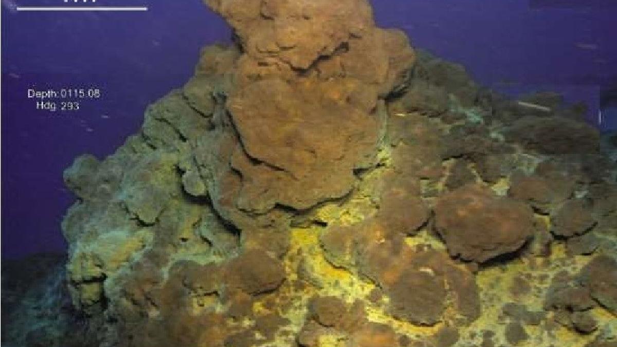 Imágenes submarinas del Volcán Tagoro, en El Hierro