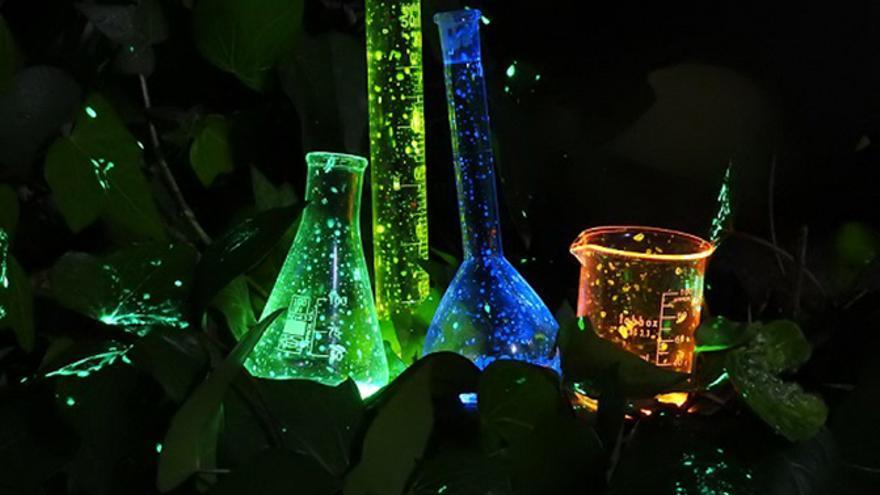 Naturaleza química.