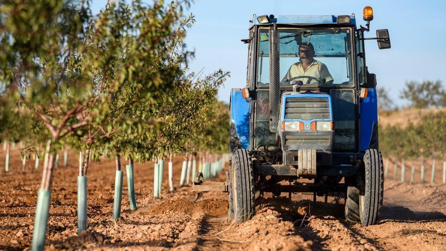 La primera guía sobre gestión de residuos agrarios reivindica una solución normativa