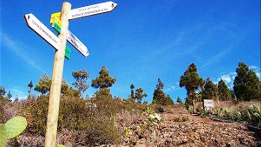 Camino san mauro-2