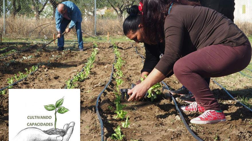 Proyecto de inclusión social Cultivando Capacidades