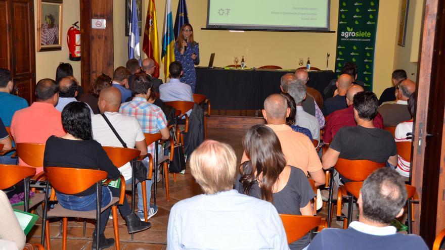 Sala con participantes en las charlas de Cajasiete, en la Casa del Vino de El Sauzal