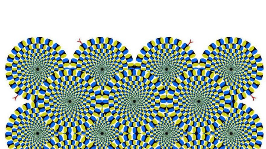 Illusions Index