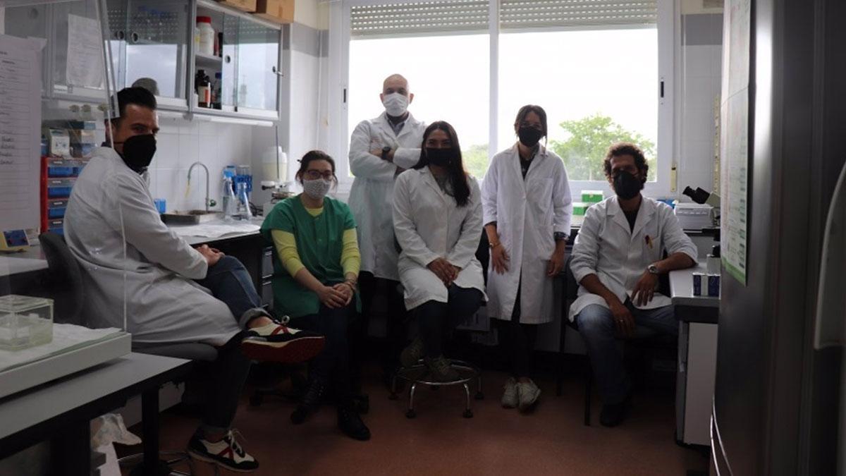 Miembros del grupo de investigación de Anatomía Patológica Animal de la Universidad de Córdoba.