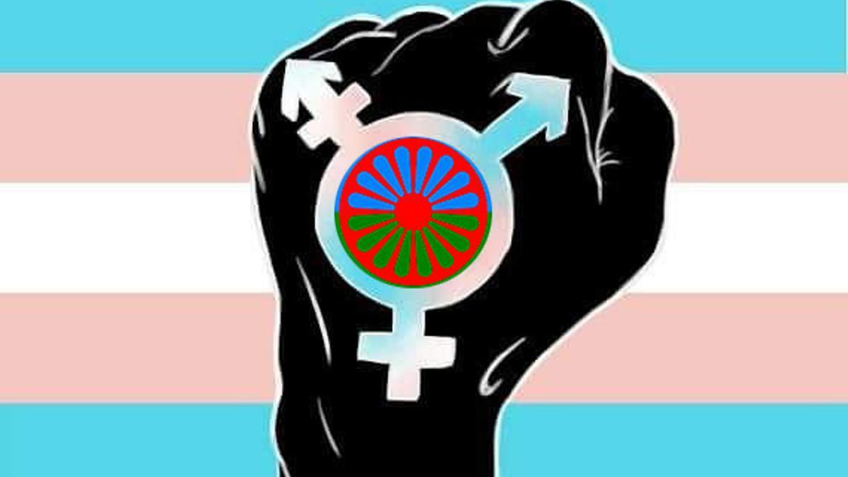 Feminismo transversal