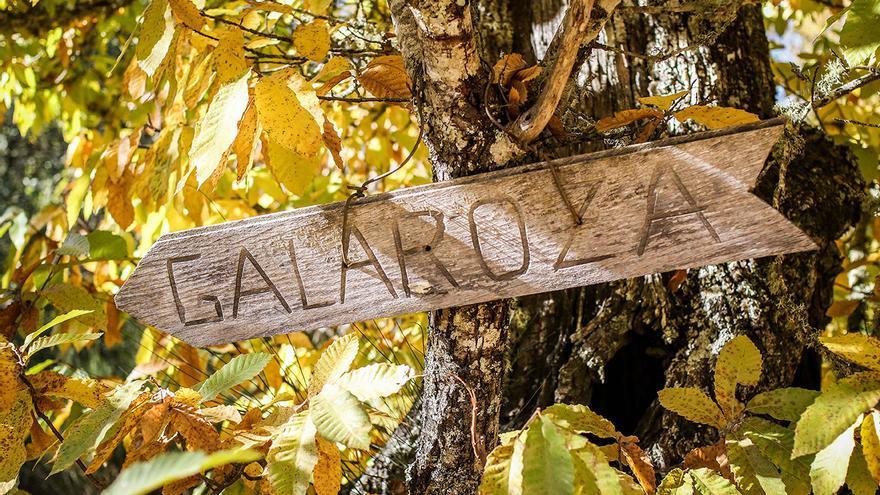 Sendero de Galaroza.