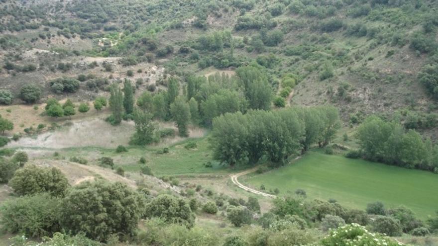 Valle del río Ungría (Guadalajara)